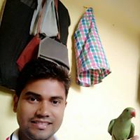 Profile picture of Amit Kushwaha